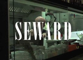 P_video_SewardMandarosso